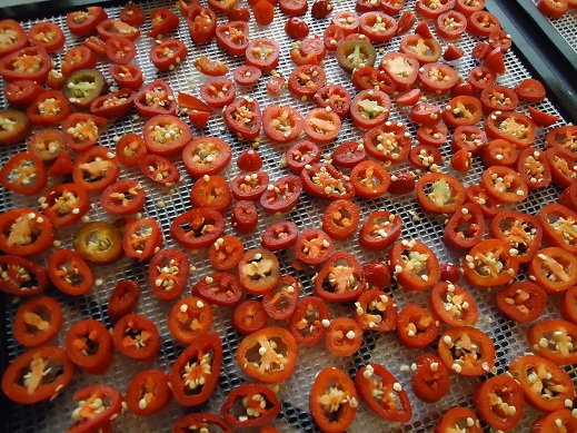 dehydrating_peppers