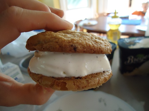 ice_cream_sandwich_4