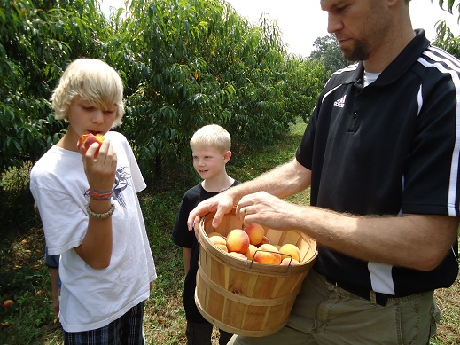 peach_picking_4