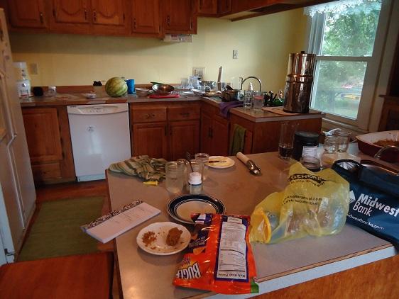 messy_kitchen_2