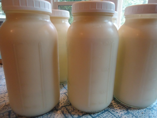 milk (1)