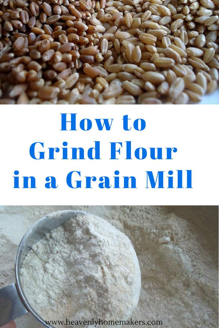 How to Grind Flour in a Grain Mill! #grainmill #grindflour #wholewheatflour