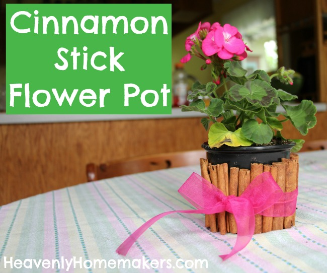 Cinnamon Stick Flower Pot
