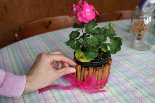 cinnamon sticks flower pot 2