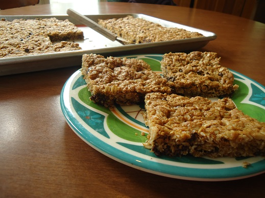 monster bars1