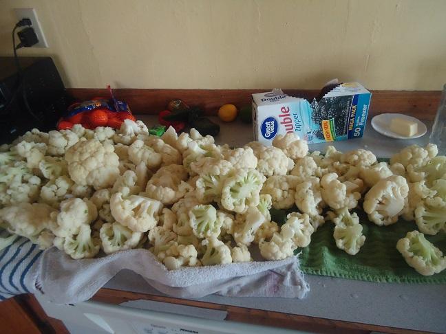 food1302