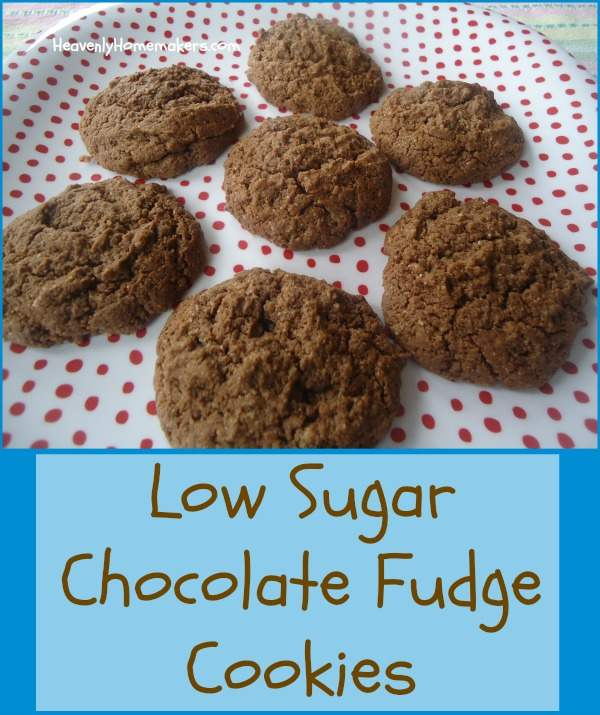Low Sugar Chocolate Fudge Cookies