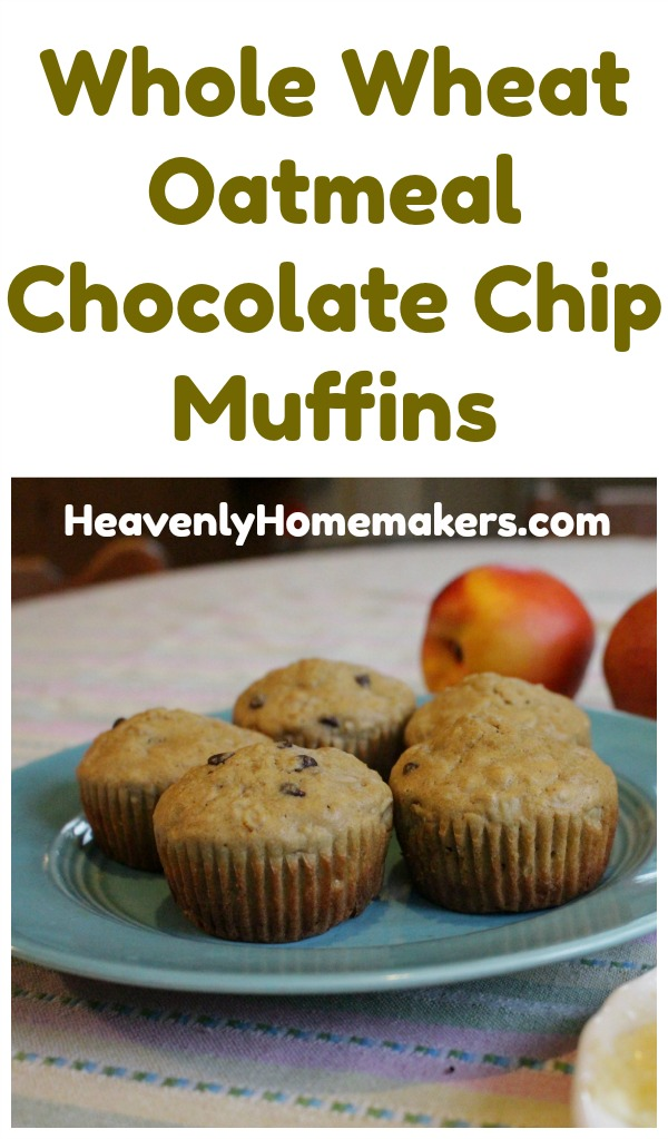 Whole Wheat Oatmeal Chocolate Chip Muffins