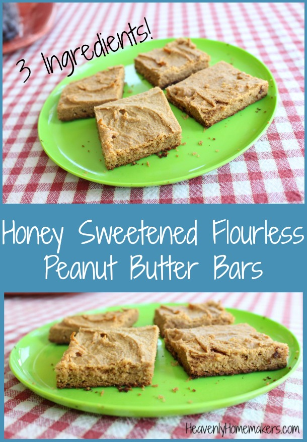 Honey Sweetened Flourless Peanut Butter Bars