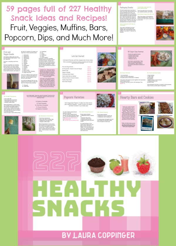 227 Healthy Snacks Recipe Book