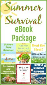 Summer Survival eBook Package